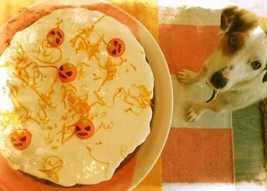 Halloween Orange Cake by Ingrid Berry