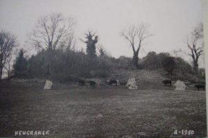 Newgrange 1950