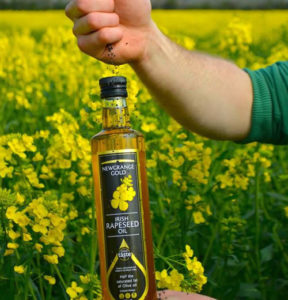 dropping rapeseed oils onto top of Newgrange Gold Rapeseed Oil in rapeseed field
