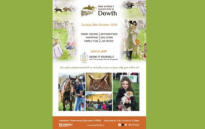 Poster with horses advertising Dowth Point to Point